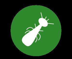 logo termites
